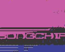 songchip